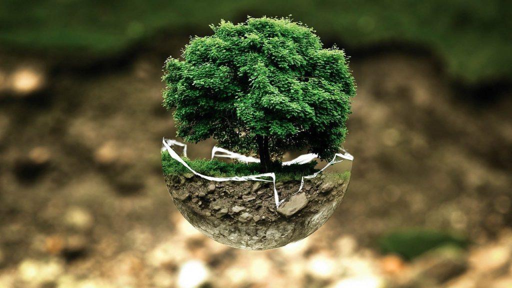 Экология важна для человека