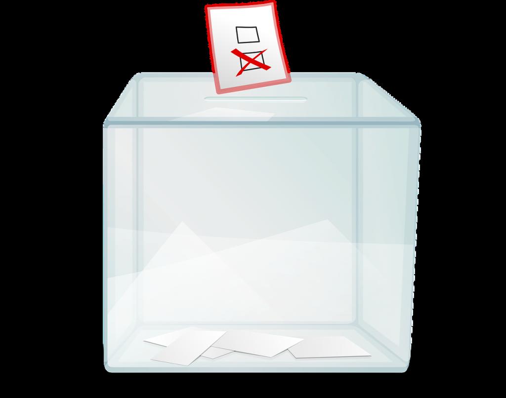 Кто имеет право голосовать на выборах?